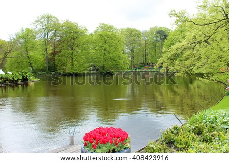 Beds of flowers along the lake or pond in the woods. Flowers colorful tulips grow in rows.