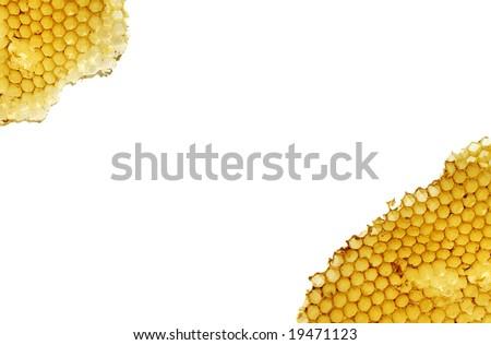 bee honeycombs without honey isolated on white background - stock photo