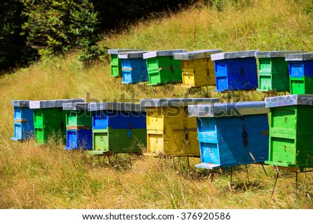 bee house on sunny meadow. beehive and beekeeping - stock photo