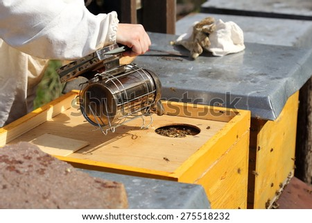 bee keeper with smoker in hand is working - stock photo