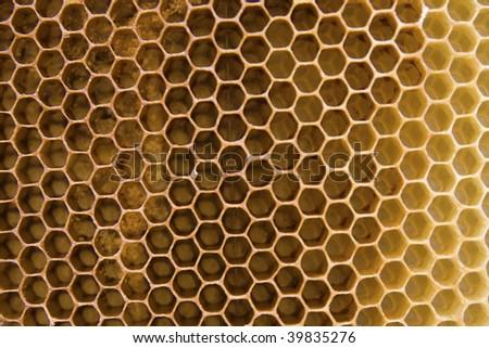 bee wax clay - stock photo