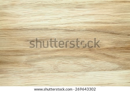 beech tree texture - stock photo