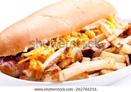 beef and cheddar sandwich with hand cut french fries - stock photo
