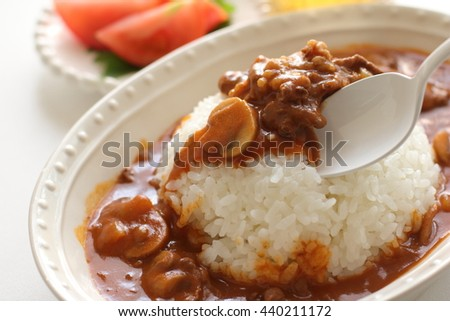 beef stew with rice for Japanes Hayashi rice image
