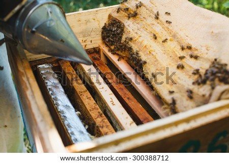 Beehive with wooden frames of honeycomb and bees inside, on sunny day, close up - stock photo