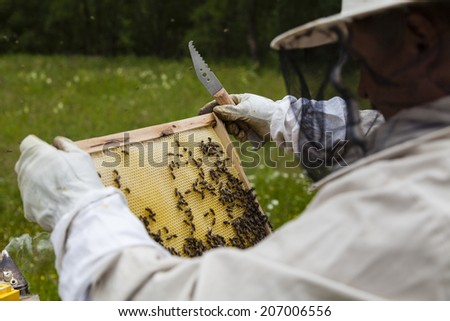 Beekeeper working with beehives in Alpine meadow. - stock photo
