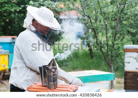 Beekeeper working with bees in beehive. Selective focus and small depth of field.