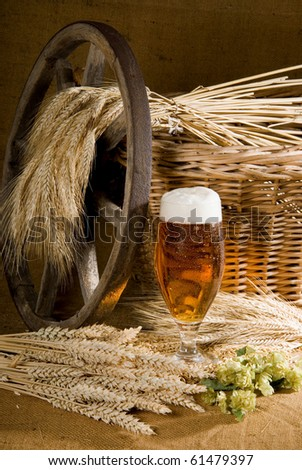 beer - stock photo