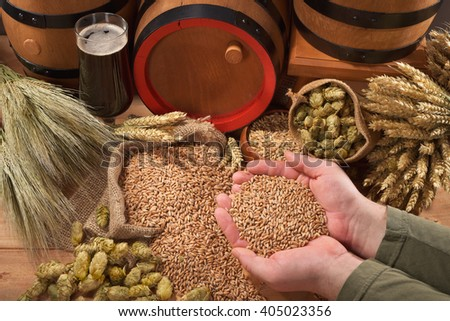 beer and beer barrel â?? hops, wheat, grain, barley and malt - stock photo