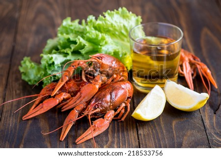 Beer and crayfish - stock photo