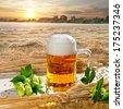 Beer And Hop Cones - stock