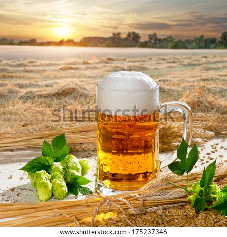 Beer And Hop Cones - stock photo