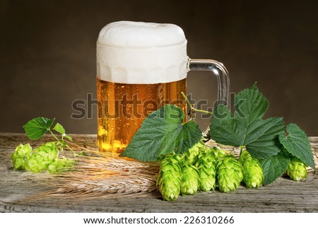 beer and hops - stock photo