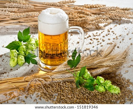 beer and raw material for beer production - stock photo