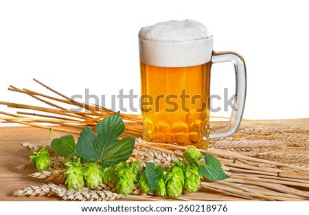 beer and raw material for beer production on the white background - stock photo