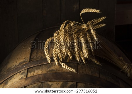 Beer barrel  - stock photo