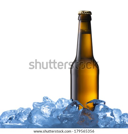 Beer Bottle in Ice Cubes