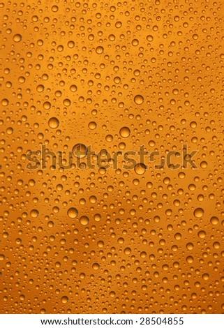 beer bottle macro - stock photo
