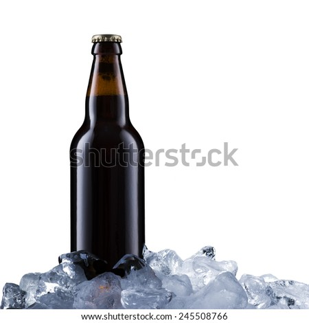 Beer Bottle On Ice Cubes - stock photo