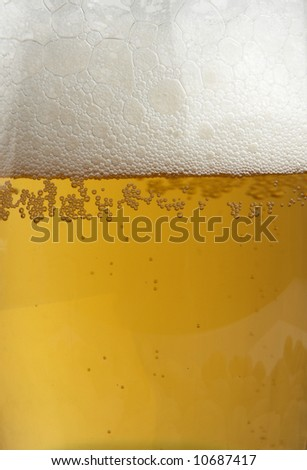 beer close-up - stock photo