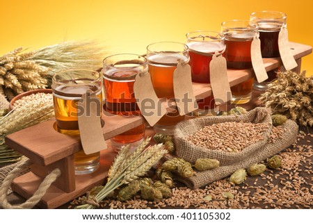 beer crate with many different beers, hops, wheat, grain, barley and malt - stock photo