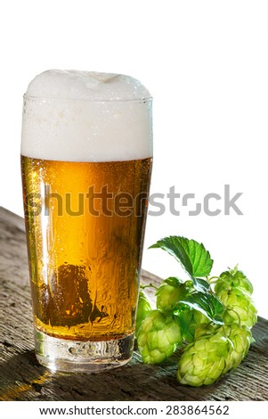 beer glass and hop cones on the white background - stock photo