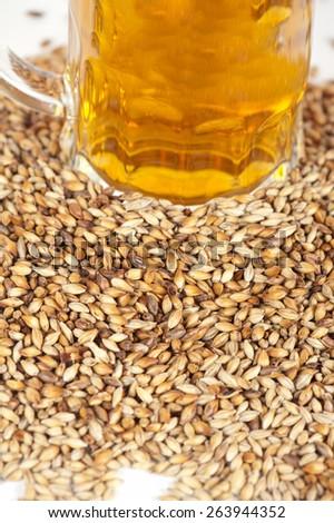 beer glass at malt grains on white background - stock photo