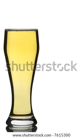 Beer Glass Isolated Against White with Reflection at Base with Copy Space - stock photo