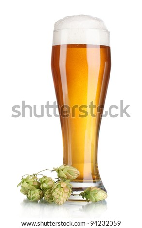 beer in a glass and green hop isolated on white - stock photo