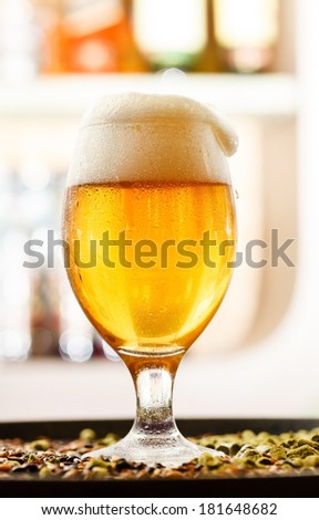 beer in the bar - stock photo
