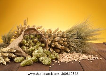 beer ingredients â?? hops, wheat, grain, barley and malt  - stock photo