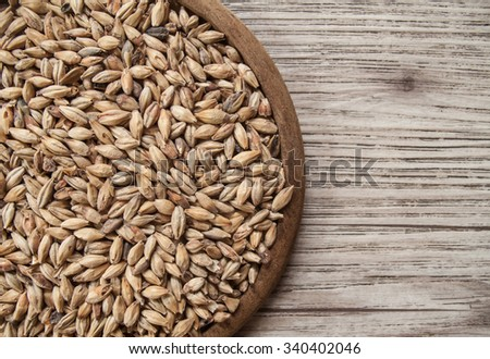 Beer ingredients, Pale ale malt on wooden background ( Space and composition for text ) - stock photo
