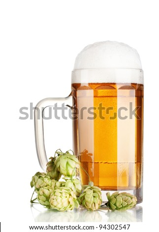 beer mug and green hop isolated on white