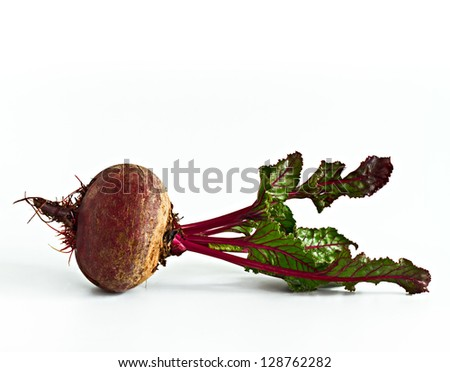Beet with green leaves - stock photo