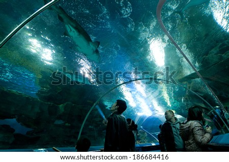 BEIJING, CHINA - MARCH 30: Tourists observe fishes in acrylic underwater tunnel of Blue Zoo on March 30, 2013 in Beijing - stock photo