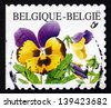 BELGIUM - CIRCA 2000: a stamp printed in the Belgium shows Violets, Pansy, Viola Tricolor, Flowering Plant, circa 2000 - stock photo