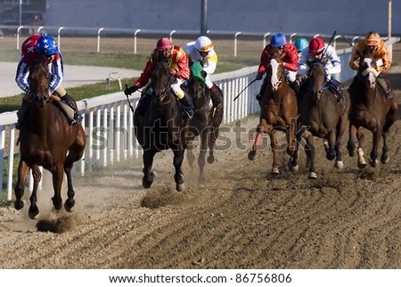 "BELGRADE,SERBIA-OCTOBER 16:Unidentified horses and jockeys in gallop in race""Wretham House"" on October 16, 2011 in Belgrade, Serbia"
