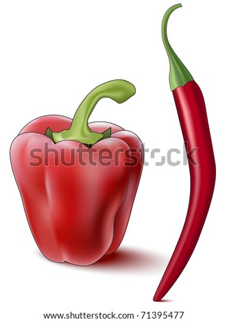 Bell pepper and red hot chili pepper, illustration, the raster version. - stock photo