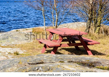 Bench and table in nature near the sea with birch trees behind. Painted red standing on rock face with some dry grass in early spring. - stock photo
