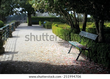 Bench in a park strewn with rose petals - stock photo