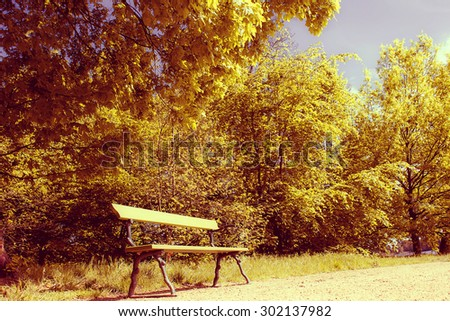 Bench in an Urban Park at Sunset