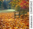 Bench in autumn park. Autumn landscape. - stock photo
