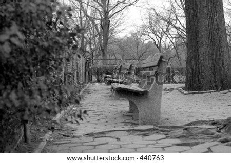 bench in central park, new york - stock photo