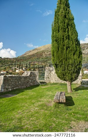 bench in old Bar fortress under cypress tree, Montenegro  - stock photo