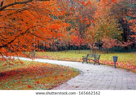 bench in park on autumn with path - stock photo