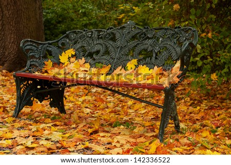 Bench in park with fallen leaves - stock photo