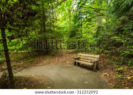 bench in pathway to beautiful Madison falls in olympic national park,Wa,Usa - stock photo