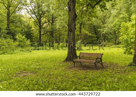 Bench in summer Park. - stock photo