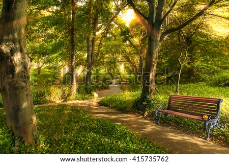 Bench in summer park with old trees and walking paths in the morning sun. - stock photo