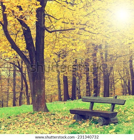 bench in the autumn park, vintage look - stock photo